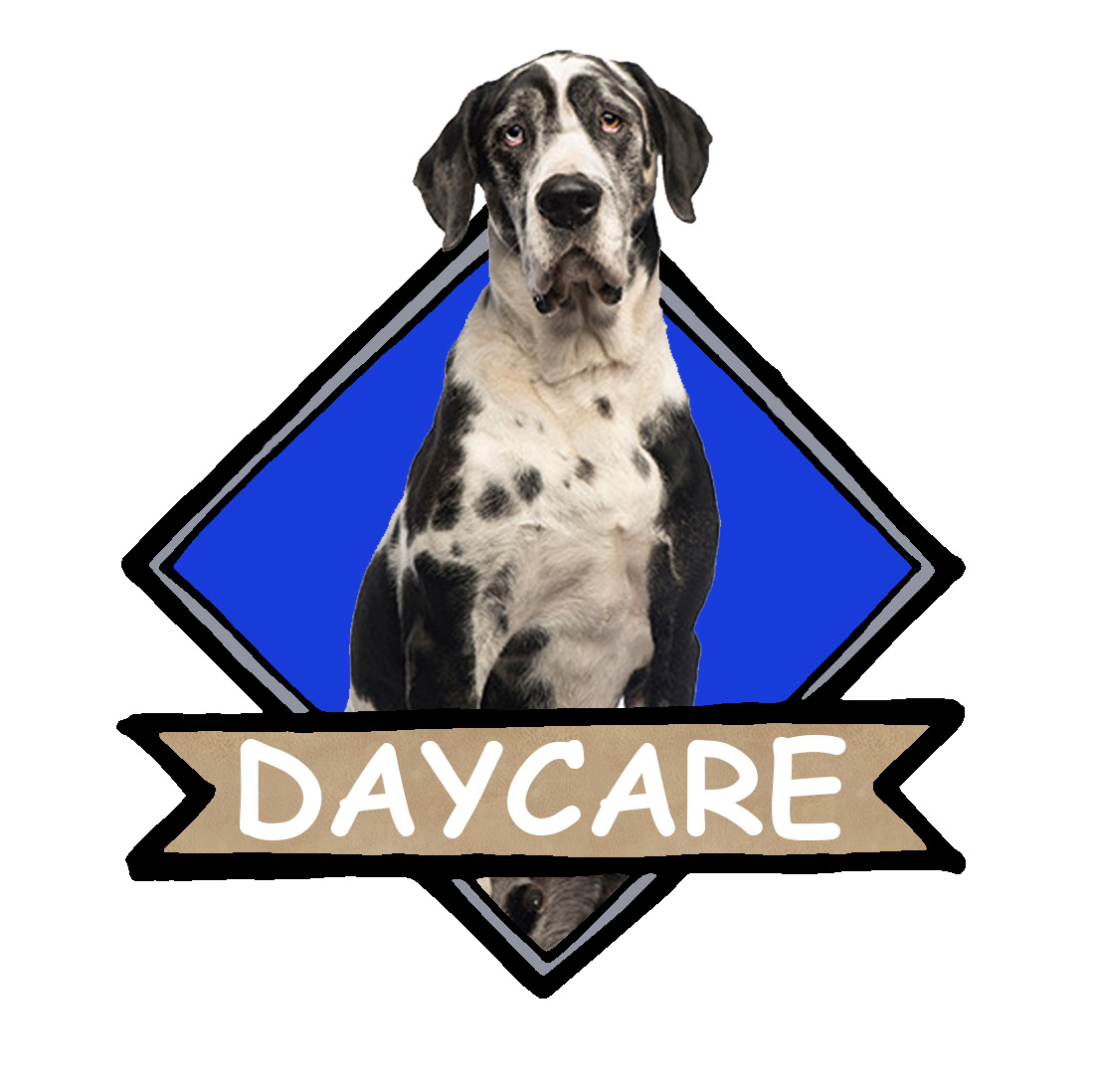 Wag Awhile Daycare