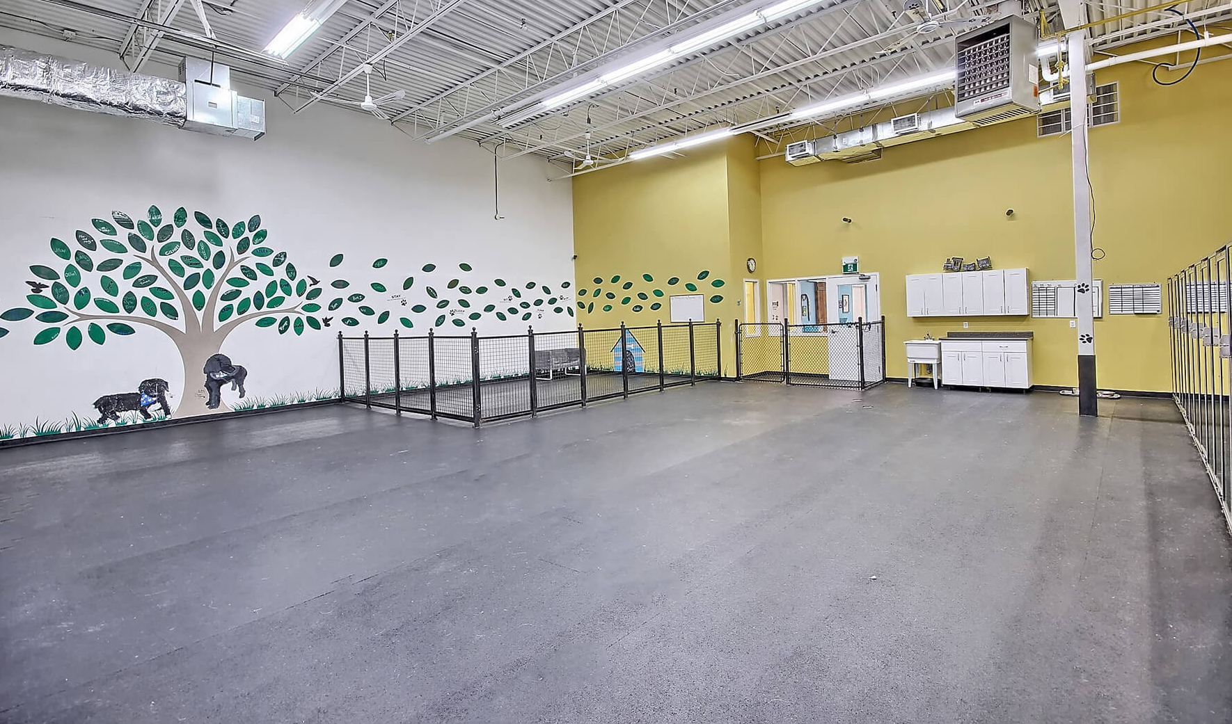 Wag Awhile Facility