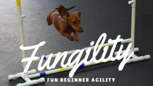 fungility logo